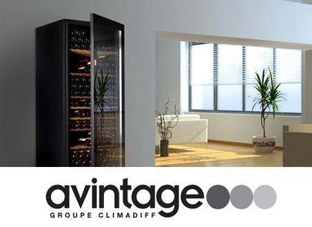 vinoteca avintage 55 botellas av46cdzi 1 encastrable en columna doble zona temperatura. Black Bedroom Furniture Sets. Home Design Ideas
